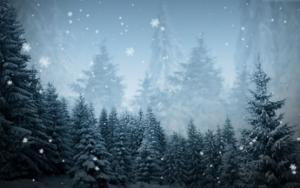 Kerst sneeuwval